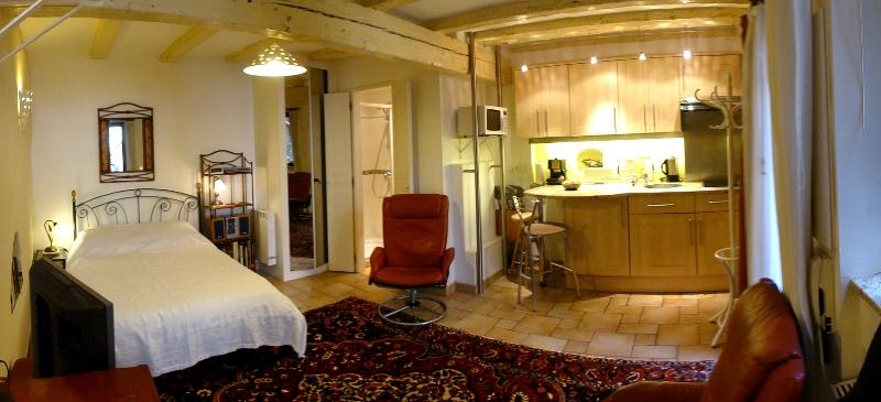 attractive studio for rent in the pedestrian heart of strasbourg france. Black Bedroom Furniture Sets. Home Design Ideas
